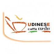 Udinesse